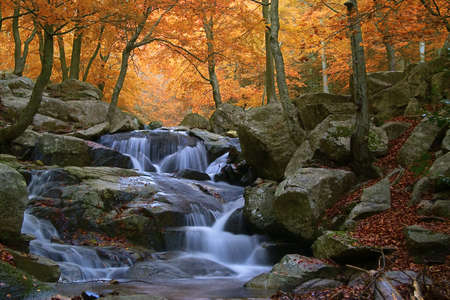 cascade mountains: Waterfall in the natural park of Montseny (Barcelona-Spain) Stock Photo