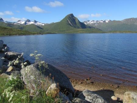 lofoten: Lake in Lofoten Stock Photo
