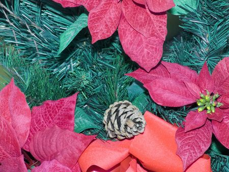 Poinsetta flowers with a background of evergreen and pine cones.  版權商用圖片