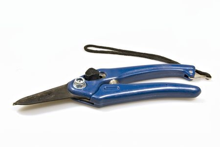 Blue handled garden clipper with ord.