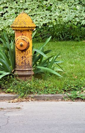 upkeep: A yellow aged fire hydrant which needs painted and upkeep.