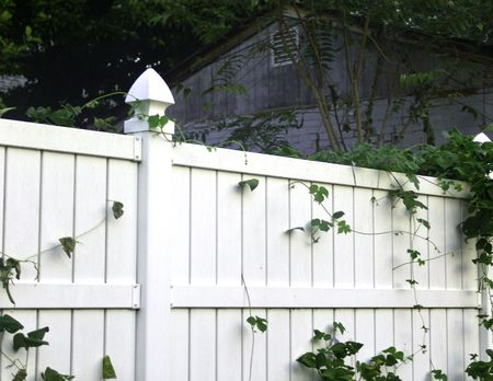 A view of a backyard fence and the greenery and structure on the other side.  Stock Photo