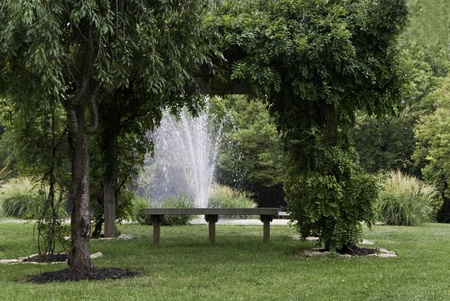 A water fountain and bench under an arbor of greenery.