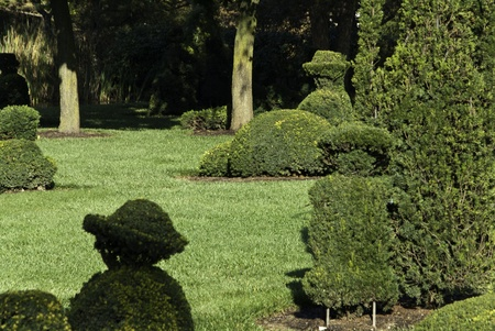 A modern topiary garden in a public city park.