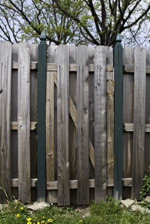 A wooden fence and gate with green posts.