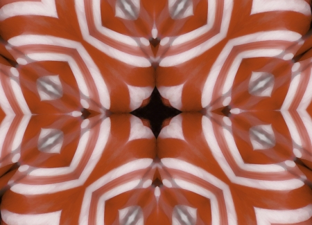 A digitally generated image using a set of algorithms on an original photo creating an image that brings to mind a boundcing pad.