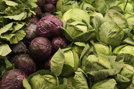 Red and green cabbages ready for a buyer in the staroe.  Imagens