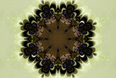 algorithms: A digitally generated image using a set of algorithms on an original photo creating the look of an intricate medalliion.