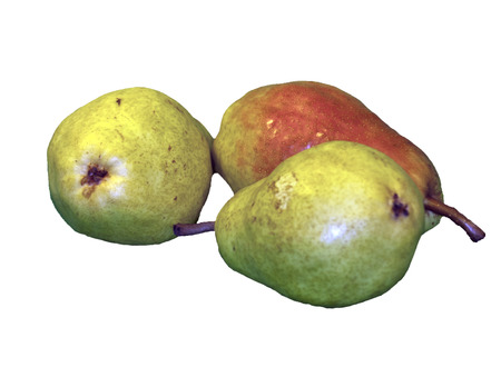 ripeness: Three pears in vaious levels of ripeness on a white background.