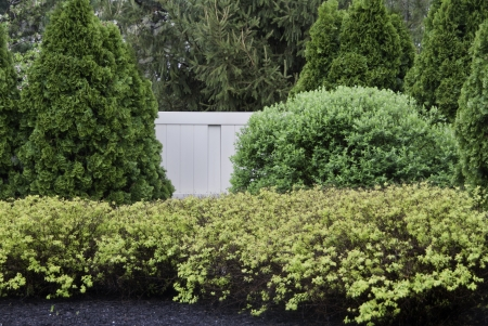 A selection of bushes and hedges partially hiding a white fence.