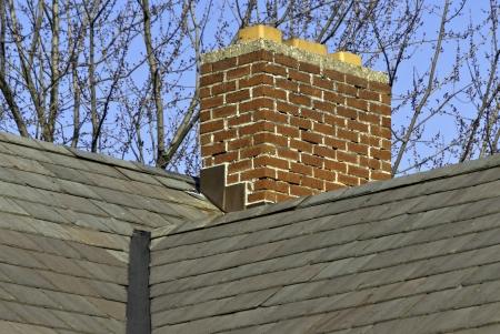 Een schoorsteen op een leien dak tegen een blauwe hemel en takken.