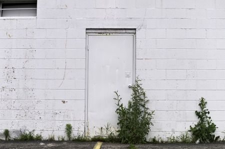 White Block wall with a door and weeds.