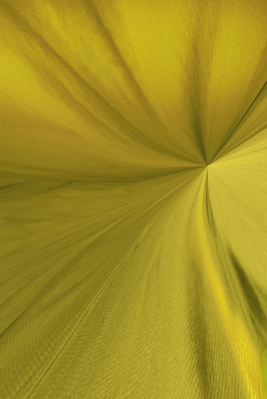 A digitally generated image using a set of algorithms on an original photo of a yellow spary bottle on a read background to this look of gathered cloth. Stok Fotoğraf