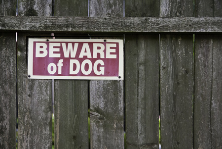 Beware of dog sign on a aging wooden privacy fence.