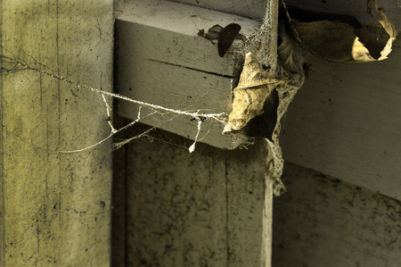 Cob webs on and in crack of old an old wooden fence. Stock Photo
