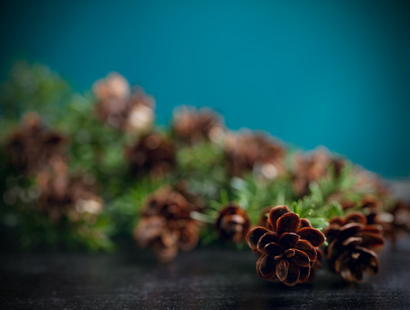 Pine bough with pine cones on black wood background