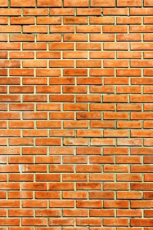 Brick wall at my office