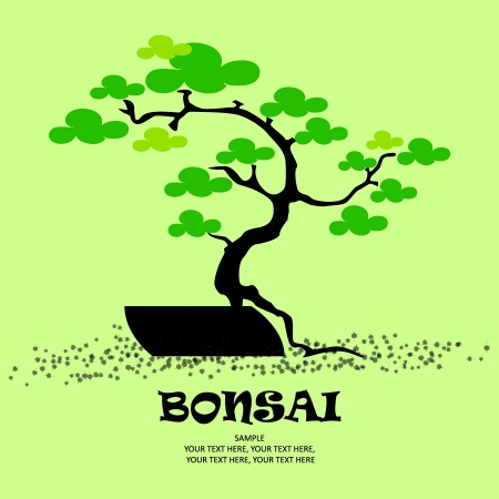 Bonsai vector stylized