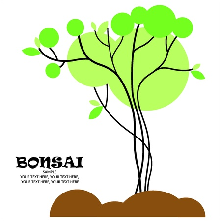 Bonsai vector stylized Stock Vector - 23109244