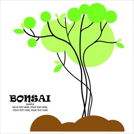 Bonsai vector stylized