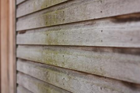 liquen: wooden house with lichen Foto de archivo