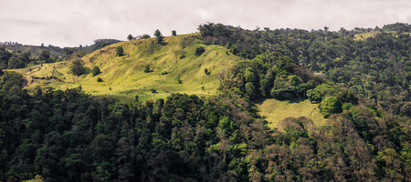 deforested: Deforested area in a mountain