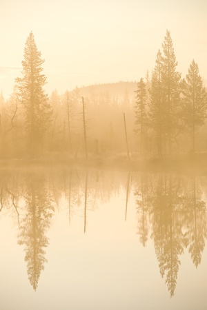 Northern Sweden, early morning and reflection in calm lake  photo