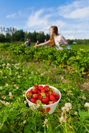 Full bowl of strawberries. Focus on bowl and group of girls behind, vertical format photo