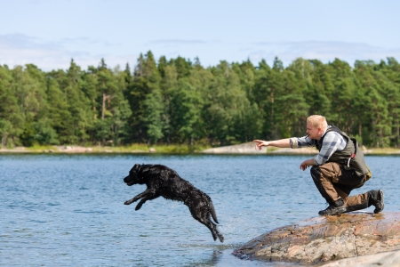 The Labrador retriever is commanded to fetch