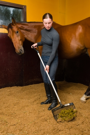 woman and horse: Woman cleans horse box by horse fork, vertical format