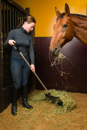 half blooded: Woman feeding horse in the stall, vertical format Stock Photo
