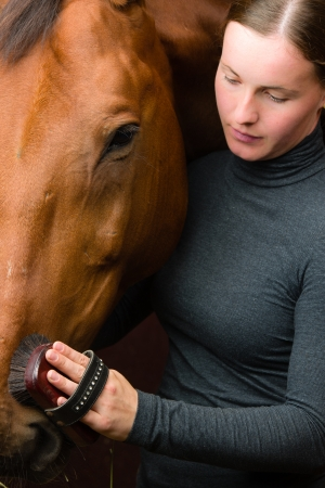half blooded: Woman grooming  horse in the stall, vertical format