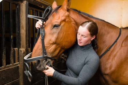 half blooded: Woman bridle a horse in the stall Stock Photo