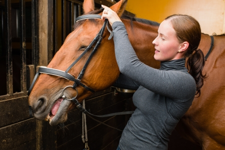 Woman bridle a horse in the stall Stock Photo - 15044333