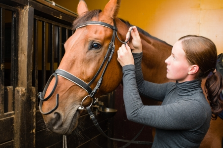 Woman bridle a horse in the stall photo