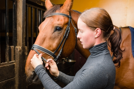 Woman bridle a horse in the stall Stock Photo - 15044317