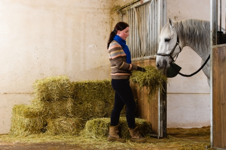 Woman give a hay for a horse Stock Photo