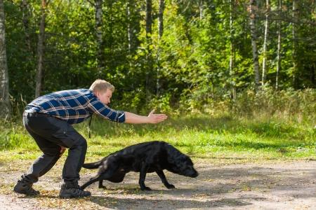 Dog owner trains his labrador retriever on outdoor, horizon format Stock Photo - 22442419
