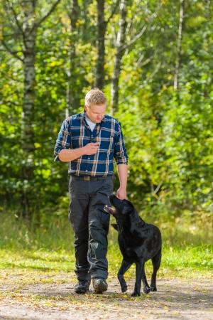 Dog owner trains his labrador retriever to heel Stock Photo