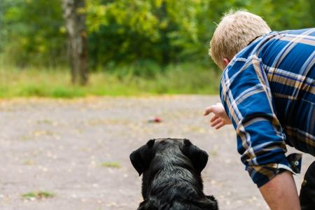 eigenaar hond traint zijn labrador retriever op outdoor, horizon formaat