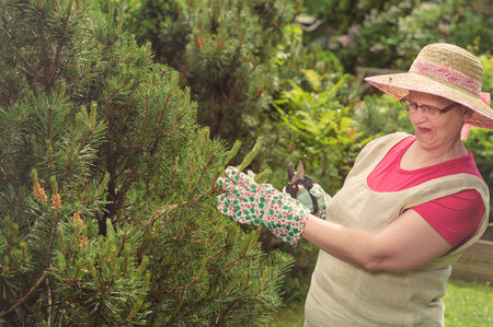 Mature woman and the wasp in the garden, cross processed image Stock Photo - 29350444