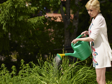 watering pot: Mature woman gardening and use a watering pot, sunny summer day Stock Photo