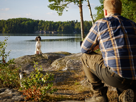observant: The hunter trains his English Springer Spaniel puppy on the shore