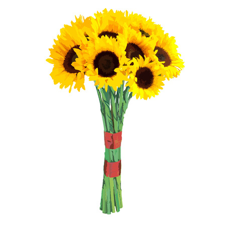 realism: Hand-drawn vector illustration of sunflower - Heliantus annual. Realistic image in bright colors with highlights and shadows