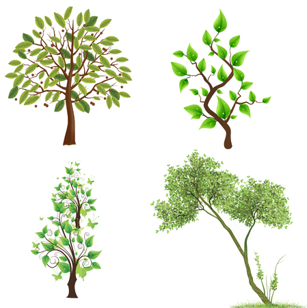 Set of beautiful green trees on white background