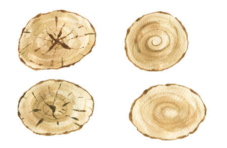Tree rings. Watercolor illustration. hand drawn abstract background. Painted wood texture.