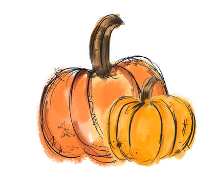 Watercolor pumpkin thanksgiving.Hand Drawn watercolor illustration. Isolated on a white background.