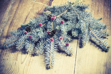 christmas decoration - green branch on the wooden floor photo