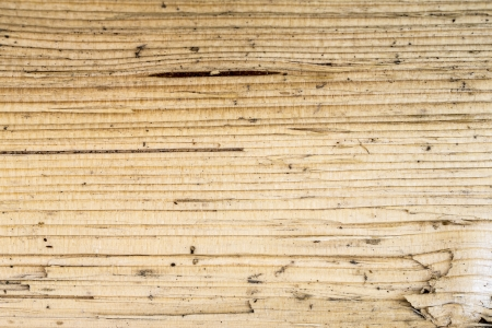 Background of brown wood texture photo
