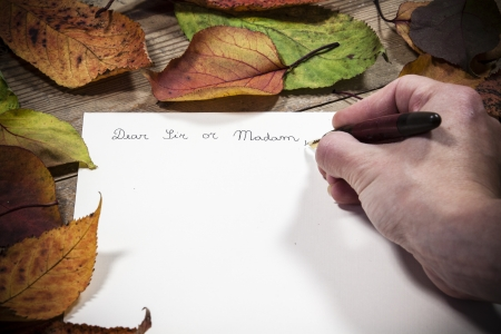 Old fashioned letter with a pen and leafs photo